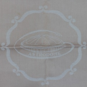 Cloth Napkin with Embossed Astrodome Image