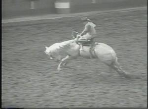 Film Footage of Television News Segments, 34th Annual Houston Rodeo
