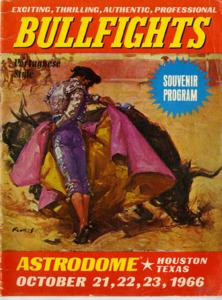 Daigle_Bullfights-001.pdf